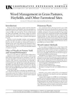 Weed Management in Grass Pastures, Hayfields, and Other ...