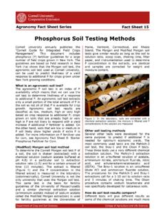 Phosphorus Soil Testing Methods - Cornell University