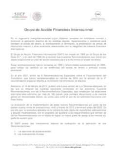 Grupo de Acción Financiera Internacional - gob.mx