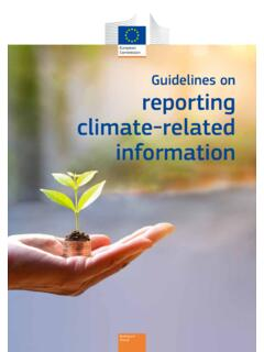 Guidelines on reporting climate-related information