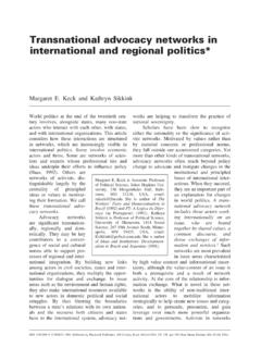 Transnational advocacy networks in international and ...