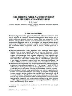 FSBI BRIEFING PAPER: NANOTECHNOLOGY IN …