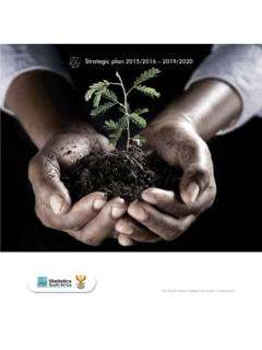 Strategic plan 2015/2016 – 2019/2020 - The South Africa ...