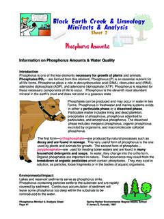 Information on Phosphorus Amounts & Water Quality