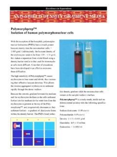 Polymorphprep™ Isolation of human polymorphonuclear …