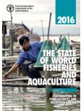 The State of World Fisheries and Aquaculture 2016
