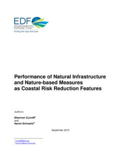 Performance of Natural Infrastructure and Nature-based ...
