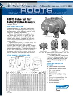 ROOTS Universal RAI Rotary Positive Blowers