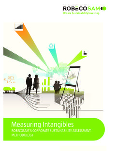 Measuring Intangibles - RobecoSAM