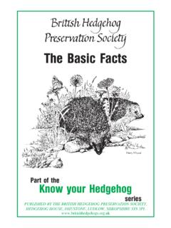 The Basic Facts - The British Hedgehog Preservation Society