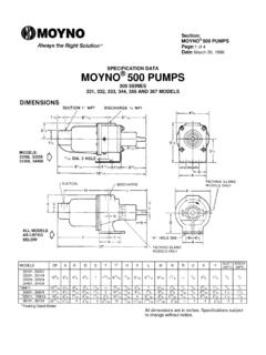 MOYNO 500 PUMPS - Fluid Systems