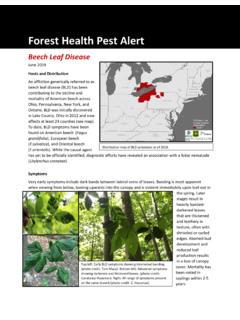 Forest Health Pest Alert - Ohio DNR Division of Forestry