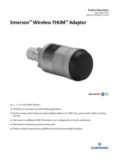 Emerson Wireless THUM Adapter