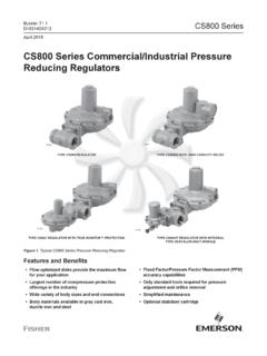 Bulletin: CS800 Series - Emerson