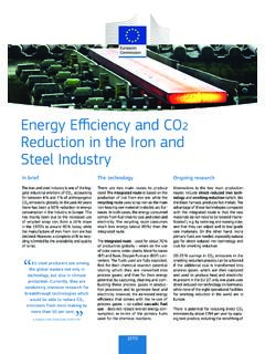 Energy Efficiency and CO Reduction in the Iron and Steel ...