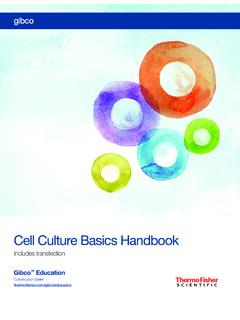 Cell Culture Basics Handbook - Thermo Fisher Scientific