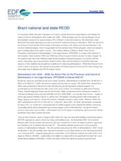 Brazil national and state REDD report 102909