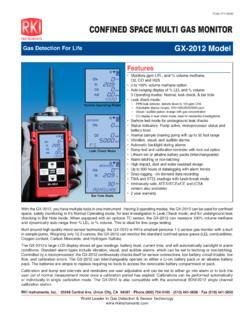 SPA MUL MONITOR - RKI Gas Detectors