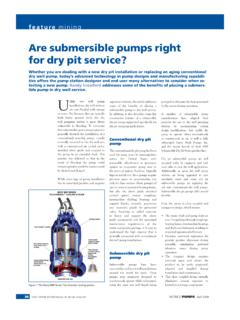 Are submersible pumps right for dry pit service? - …