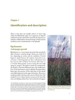 Identification and description - Research and Extension