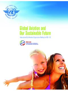 Global Aviation and Our Sustainable Future