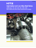 Cast Carbon and Low Alloy Steel Valves - AIV, Inc.