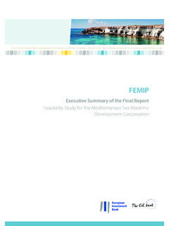Feasibility Study for the Mediterranean Sea …