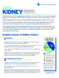 Leading Causes of Kidney Failure - American Kidney Fund