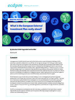 What is the European External Investment Plan …