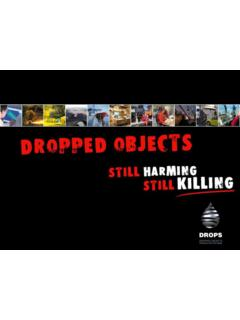 Dropped Object Awareness and Prevention - DROPSOnline