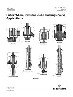 Micro Trims September 2017 Fisher Micro Trims for Globe ...