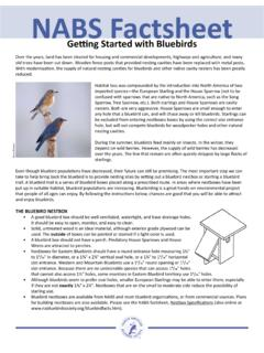 BS Factsheet - Bluebird