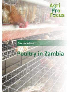 Poultry in Zambia - AgriProFocus