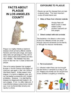 FACTS ABOUT PLAGUE IN LOS ANGELES COUNTY