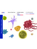 CD Marker Handbook Human and Mouse - BD Biosciences