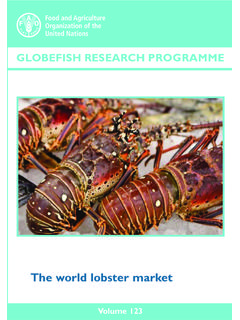 The world lobster market - Food and Agriculture Organization